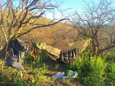 About hammock use in Arizona