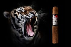 BEAST Handcrafted Cigars Beast, Cigars, Classy, Journal, Smoking Pipes, Chic, Cigar, Smoking