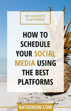 How to schedule your social media using the best platforms // Katie Skow