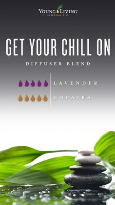Add 5 drops of Young Living Lavender Essential oil and 5 drops of Young Living Copaiba Essential oil with water to your diffuser! Chill out! Yl Essential Oils, Essential Oil Diffuser Blends, Young Living Essential Oils, Cedarwood Essential Oil, Yl Oils, Lavender Oil Uses, Lavender Essential Oil Uses, Diffuser Recipes, Young Living Oils