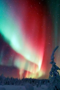 The Northern Lights in Finnish Lapland. Click pin through to post for more…