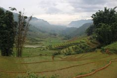Out in the middle of the rice fields green season. SaPa Vietnam 2016 [OC][5184x3456]