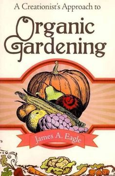 Organic Gardening Tips For Beginners Veg Garden, Vegetable Gardening, Apple Seeds, Organic Gardening Tips, Gardening For Beginners, Organic Recipes, Beautiful Gardens, Planting, Garden Ideas