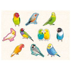 Favorite Seal 74748 bird product details | Mind Wave shopping site