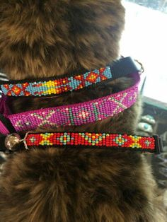 Beaded dog collars~Blessing Waters Native Arts