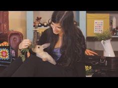 Robin (Official HD) Music Video ··· Escuchando Elefantes