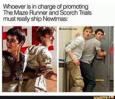 I ship NEWTMAS toooo! NEWTMAS FOREVER!