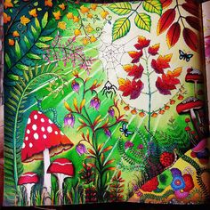 Take a peek at this great artwork on Johanna Basford's Colouring Gallery! Enchanted Forest Book, Enchanted Forest Coloring Book, Colouring Pages, Coloring Books, Coloring Stuff, Lost Ocean, Butterfly Coloring Page, Johanna Basford Coloring Book, Mushroom Art
