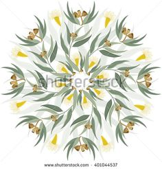 Abstract circular ornament, mandala with native australian plant eucalyptus leaves and flowers. Round floral pattern isolated on white background