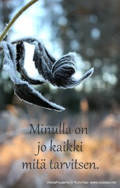 RunoTalo: Voimapuutarha kortit vko 43 Motivational Quotes, Inspirational Quotes, Affirmation Cards, Self Motivation, Life Organization, Spiritual Growth, Self Help, Grateful, Affirmations