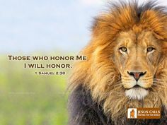 †MIGHTY WARRIOR BLOG † THE POWER OF PRAYER: Honor God