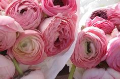 peonies wrapped in tissue paper. i love that.
