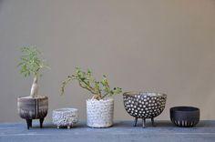 little dotty ceramic pot collection http://25.media.tumblr.com/tumblr_m49er8duTu1qfszuko1_500.jpg