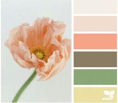 Spring hues colors design seeds, color schemes и pantone col Colour Pallette, Colour Schemes, Color Combos, Color Patterns, Spring Color Palette, Peach Palette, Spring Colors, Design Seeds, Color Concept