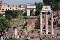 Roman Forum, Rome, Italy.  This was just an amazing place to walk through...  history, history, history...