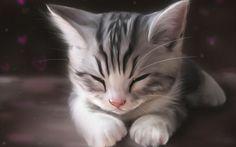 gatinho fofo dormindo Vetor