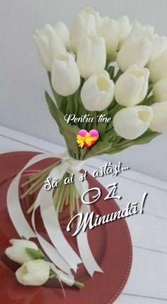 Good Morning, Table Decorations, Birthday, Plants, Home Decor, Buen Dia, Birthdays, Decoration Home, Bonjour