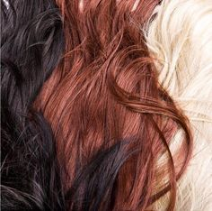 Silk Oil of Morocco Hair Care...There's Something for Everyone... www.silkoilofmorocco.com #silkoilofmorocco #haircare #arganoil #hairtreatment #oilofmorocco #silk #blondehair #brunettehair #redhair