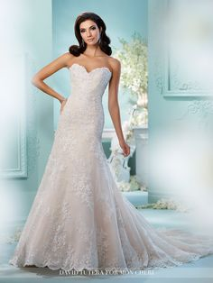 David Tutera - Strapless tulle and organza over satin fit and flare dress with hand-beaded embroidered lace, scalloped sweetheart neckline, scalloped hemline, chapel length train, detachable spaghetti