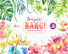 Tropic Bang Elements part 1. Watercolor clipart lily