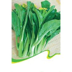 TOOGOO(R)1 Bag 200 Seeds Cabbage Vegetables * Check out this great product.