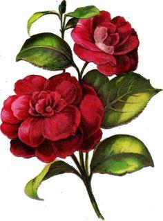 Oblaten Glanzbild scrap die cut chromo Blume flower 12,6 cm Blüte blossom