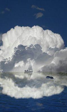 De vez em quando é preciso navegar nas nuvens do mar: voar com os anjos e nadar com os golfinhos! By Isah