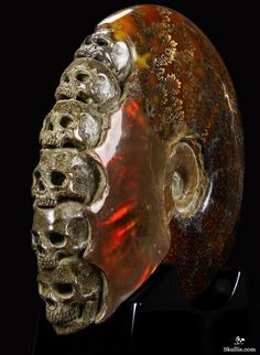 Skullis.com A Crystal Skull a Day: June 24, 2014 - The Ancient Council - Ammonite Fossil with Ammolite Carved Crystal Skulls Sculpture with Black Obsidian Stand