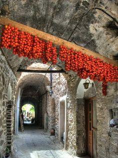 ღღ Tomato Tunnel - Chios Island, Greece by deanna Santorini, Mykonos, Samos, Places Around The World, Around The Worlds, Beautiful World, Beautiful Places, Chios Greece, Places To Travel