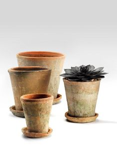 Display and grow your small house plants, herbs, in-season hyacinths or other bulbs, in these mossed redstone clay pots. The rustic pots have one drainage