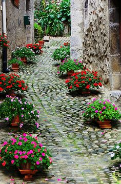 Saint-Lizier by PierreG_09, via Flickr; France. Wooow!!! what a fabulous French garden path!!!