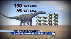 Biggest Dinosaur Ever Found: Giant Titanosaurus Discovered in Argentina