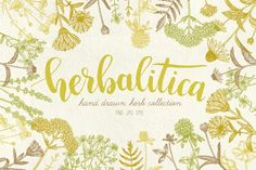 Herbalitica Vintage Plants by Bantiq Vision on @creativemarket