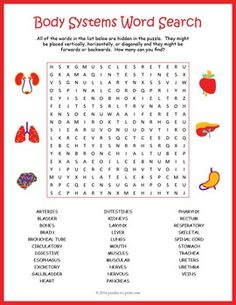 economics terms word search puzzle Economics terms word search game for primary education.