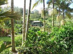 Hanalei Vacation Rental - VRBO 289370 - 1 BR North Shore House in HI, Private, Big Views, Near Beaches & Gardens