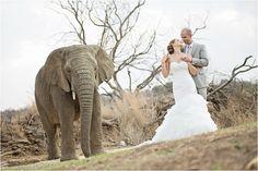 Cher & Micheal wedding at Askari Lodge wedding venue Pretoria, Lodge Wedding, Wedding Venues, South Africa Honeymoon, South African Weddings, Honeymoons, First Kiss, Cher, My Dream