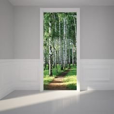 "Door Wall Sticker Birch Tree Forest - Self Adhesive Peel & Stick Repositionable Fabric Mural 31""w x 79""h (80 x 200cm) - - Amazon.com"