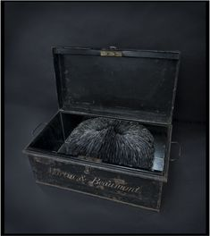 Cache, 2011, Kate MccGwire-Mixed media with pigeon tail feathers in antique metal trunk 46 x 26 x 43 cm-Kate Mccgwire