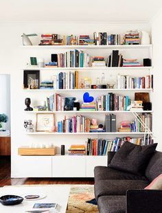 i suwannee: bookcase of the day