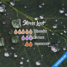 Stress Less — Essential Oil Diffuser Blend my.doterra.com/Melissabrady2