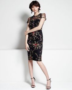 David Meister Cocktail Dress Embroidered