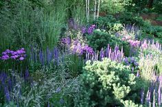 A Garden for First Touch at St George's. RHS Chelsea Flower Show 2014. Click to read article and to see plants list used.