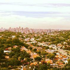 Bom dia #sãopaulo ! A área verde na cidade da um contraste bonito e saudável . #respira #sampa #sp #brasil #urban #nature #vejasp #serpaulistano #sorriasp #city #oflove