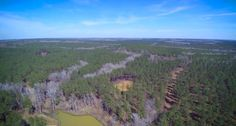 This property in western Lee County has 230 +/- acres and is loaded in timber and pine plantations. For more information contact Brian Watts with Southeastern Land Group at 1-866-751-LAND or 334-707-4273 or email him at Brian@SElandgroup.com. #GHVTV