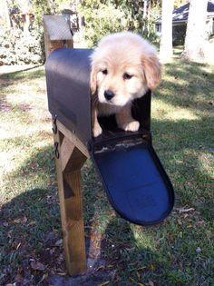 Balehead, if I could send one I would!