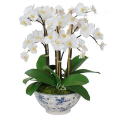 Points You Should Know Prior To Obtaining Bouquets Faux Orchid In Rose Trellis Bowl Indoor Orchids, Artificial Orchids, Orchid Plants, Ikebana, Orchid Flower Arrangements, Rose Trellis, Growing Orchids, Faux Plants, Faux Flowers