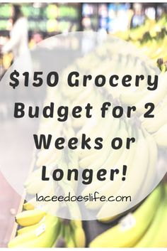 Grocery Budget | Two Weeks | Meal Plan | Budget Tips