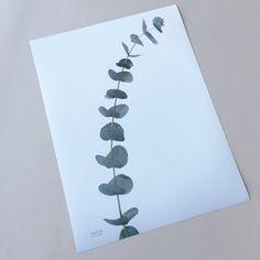 SIMPLICITY poster 🌿   http://posterhouse.no/produkt/simplicity/