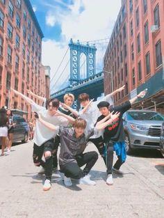 🌻stray kids🌻- felix, seungmin, lee know, woojin & I.N Lee Min Ho, Mixtape, Nct, Gone Days, Felix Stray Kids, Kid Memes, Kids Wallpaper, Lee Know, Minho