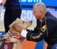 A decorated veteran of the Iraq and Afghanistan wars was surprised and thrilled to be presented with a service dog at a New York Knicks game.